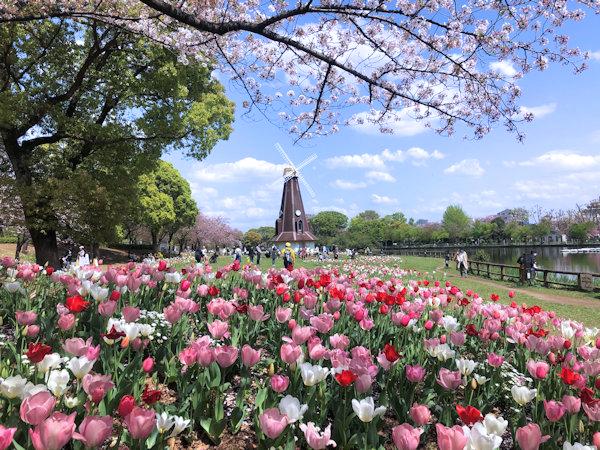 浮間公園の風車.JPG