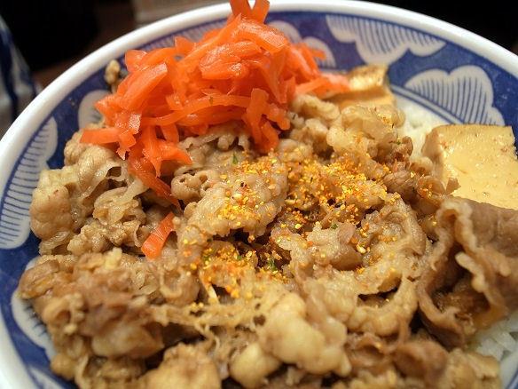 紅生姜と牛丼.JPG