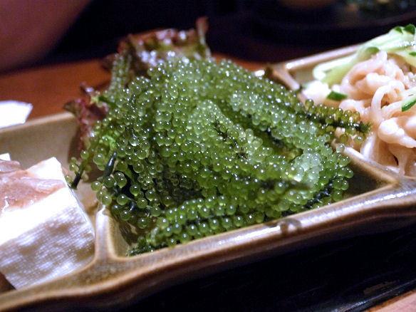 生海ぶどう.JPG