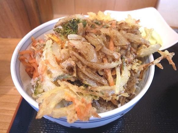 野菜かき揚げ丼.jpg