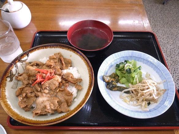 ナムル付き焼肉丼.JPG